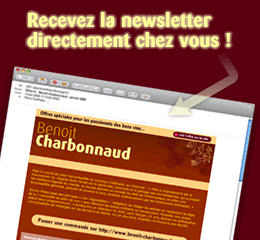Exemple de newsletter